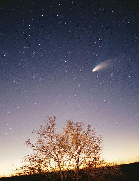 彗星01.jpg